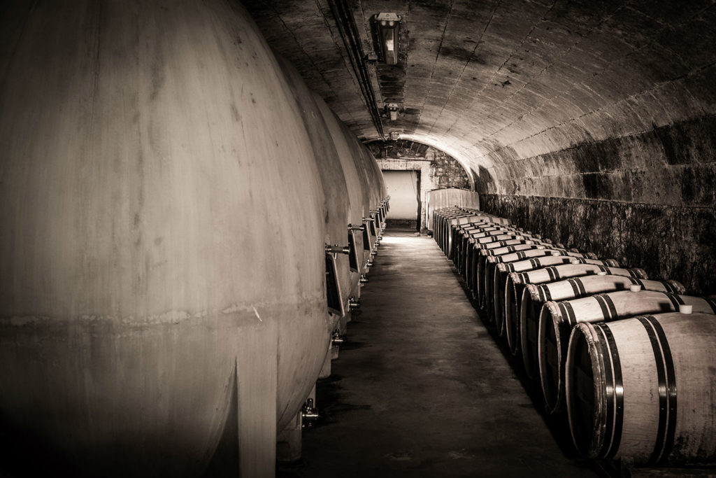 photo-vignes-vins-016
